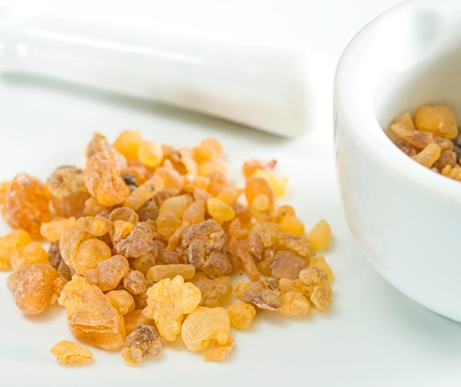 Boswellia Supplements - Kondor Pharma Blog